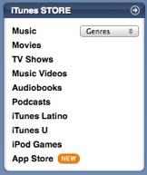 iTunes Store panel
